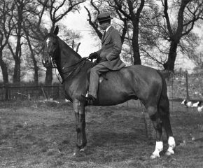 Improve Horse Riding
